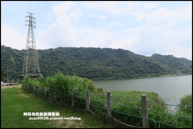 大溪韭菜43.JPG