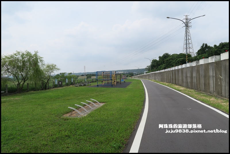 大溪韭菜47.JPG