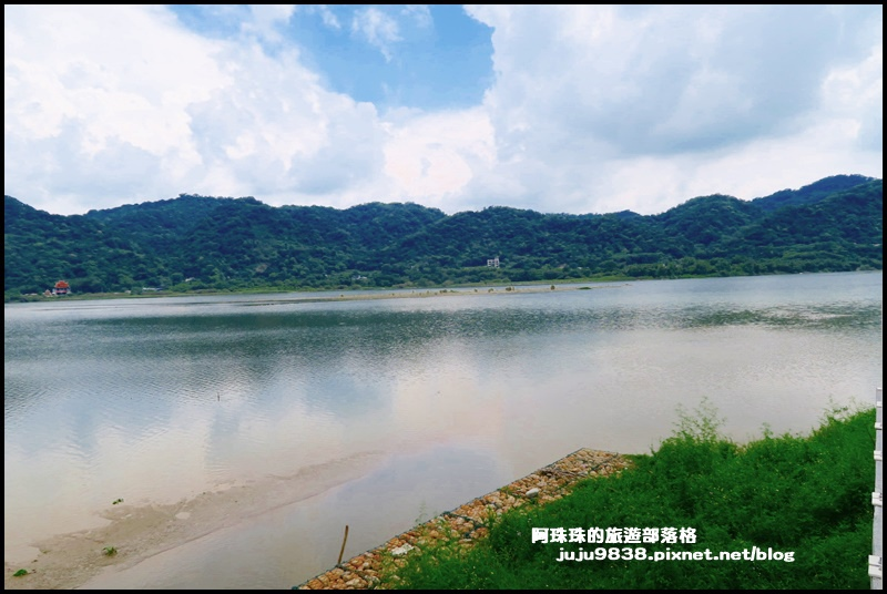 大溪韭菜54.JPG