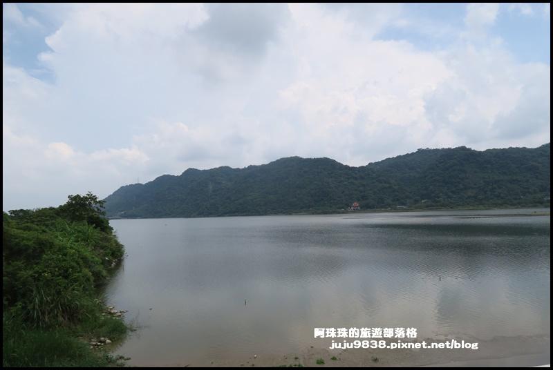 大溪韭菜51.JPG