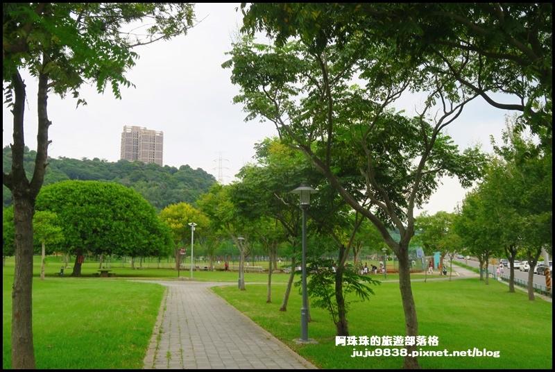 大溪韭菜61.JPG