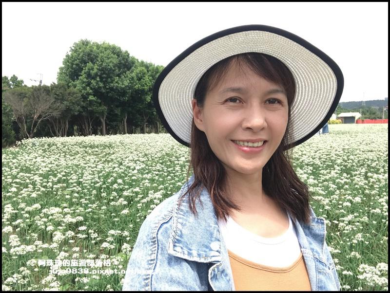 大溪韭菜花7.JPG