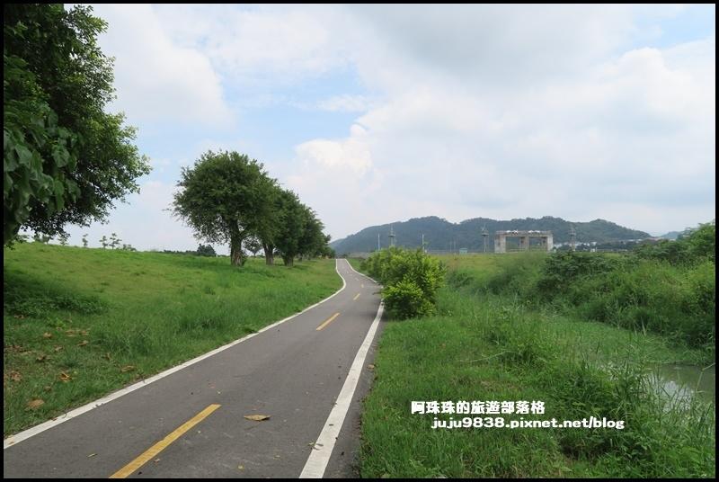 大溪韭菜花25.JPG