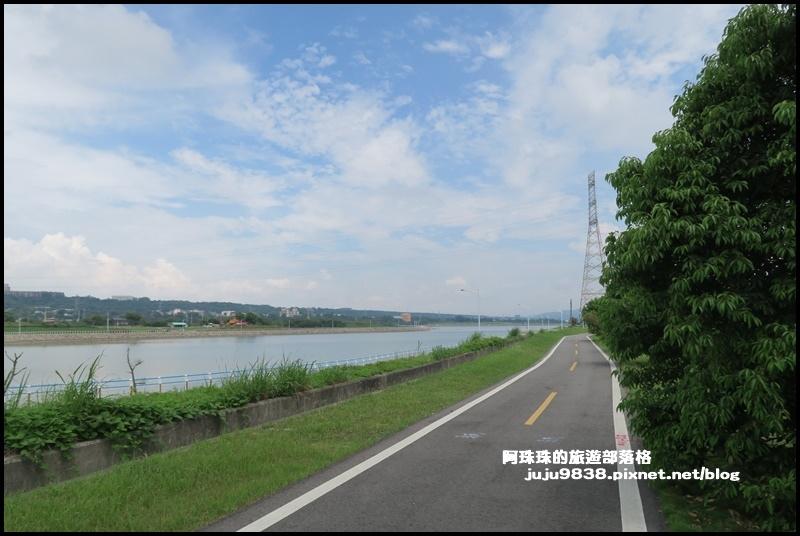 大溪韭菜花27.JPG
