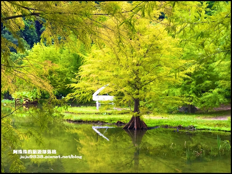 雲水度假村4.JPG