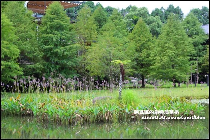 雲水度假村31.JPG