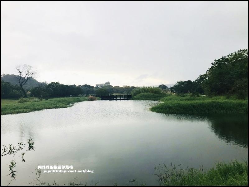 月眉生態池2.JPG