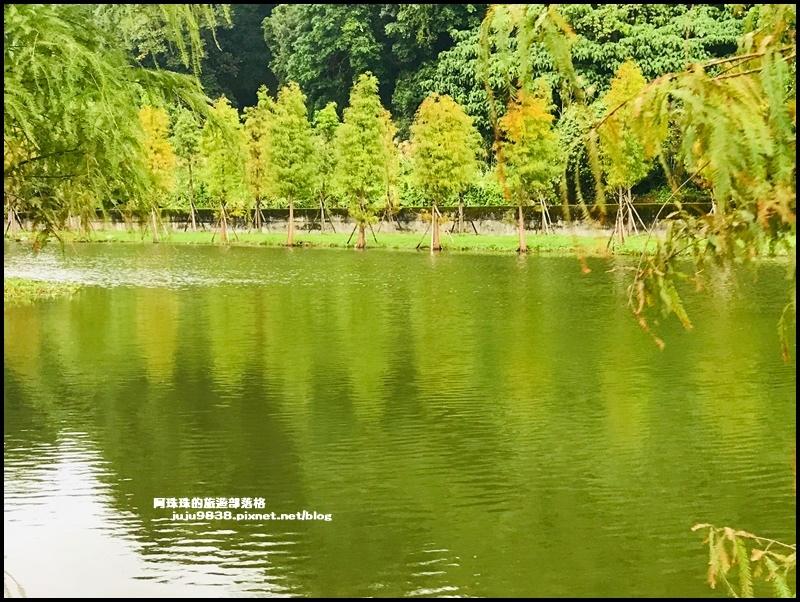 月眉生態池11.JPG