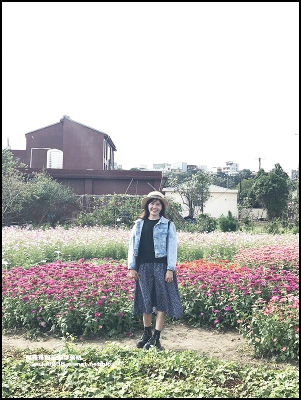大溪花彩節12.JPG