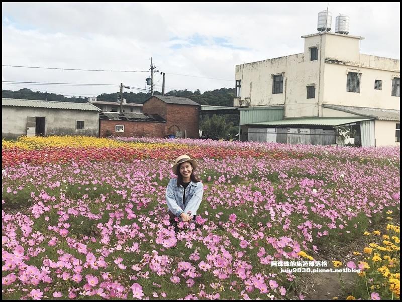 大溪花彩節25.JPG