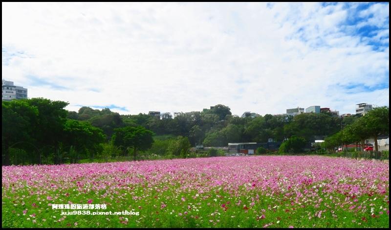 大溪花彩節29.JPG