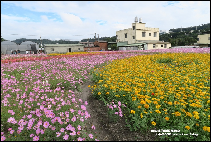 大溪花彩節40.JPG