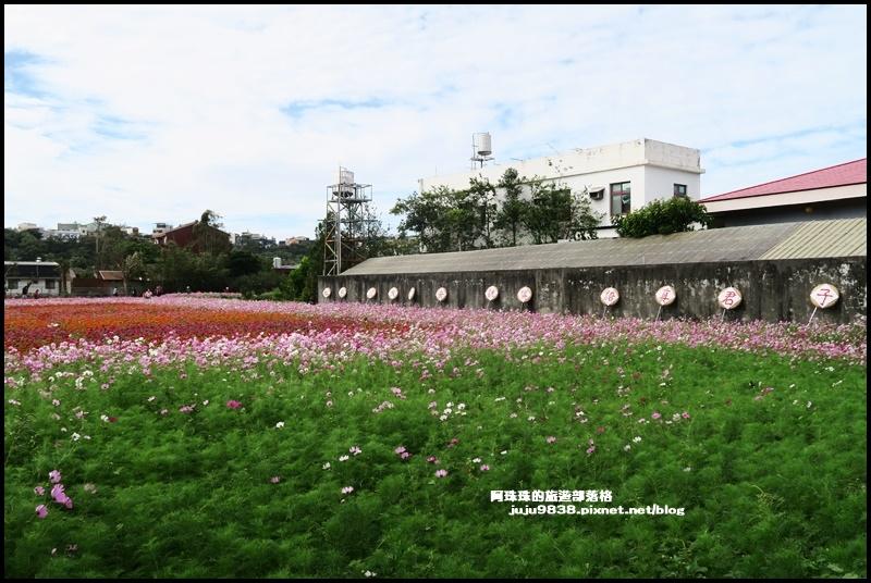 大溪花彩節49.JPG