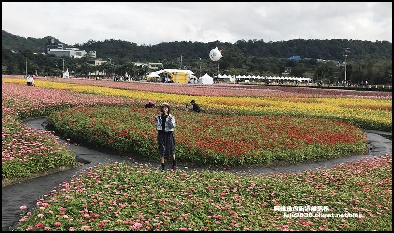 大溪花彩節66.JPG