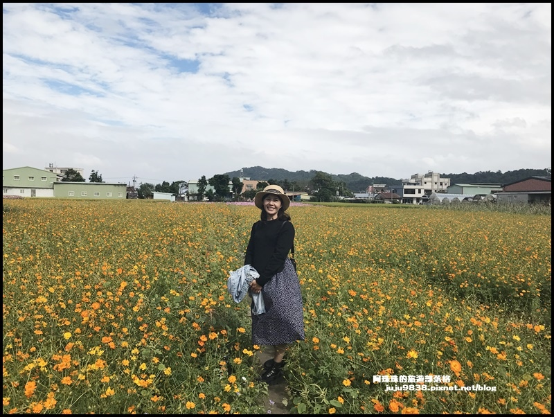大溪花彩節71.JPG