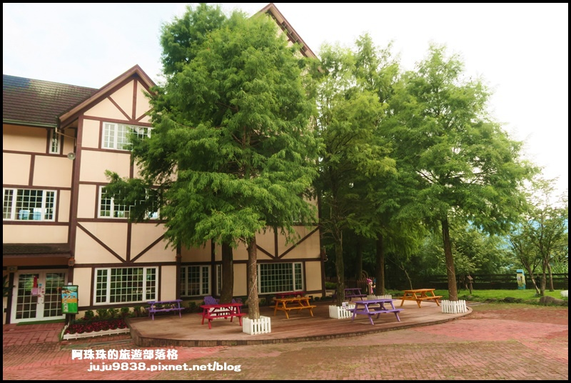 綠光森林29.JPG