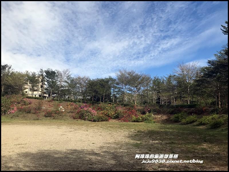 雲夢山丘1.JPG