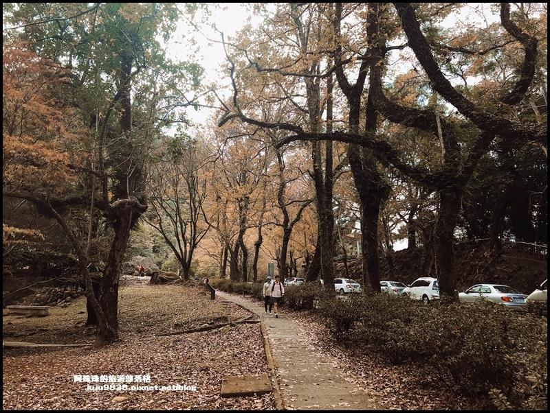 石門水庫49.JPG