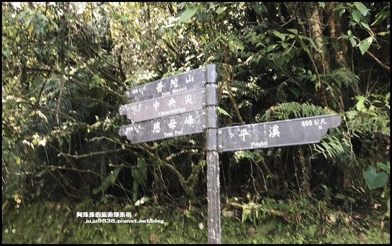 孝子山70.JPG