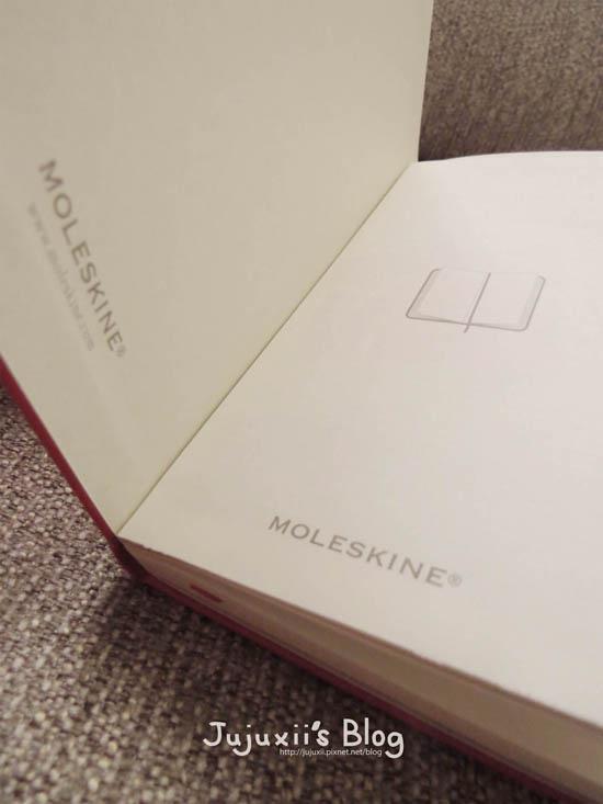 MOLESKINE04