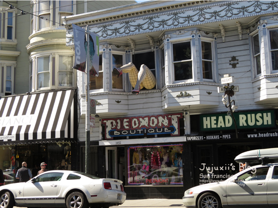 Haight and Ashbury Streets 12