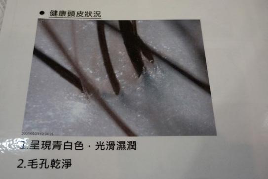舒妃 自然匯活動14.jpg