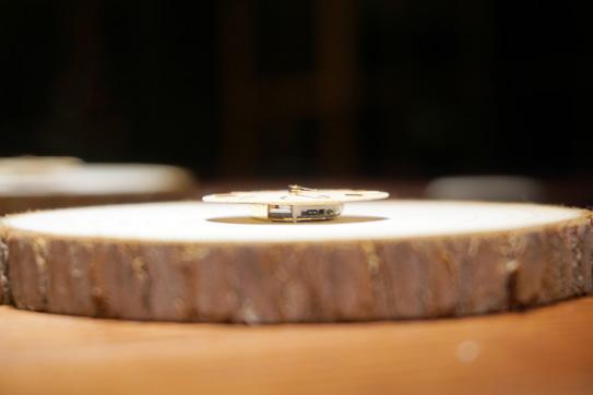 FREEDOM&SEED木頭手錶 08.jpg