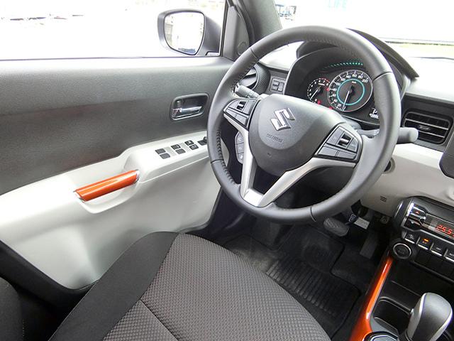 Suzuki 06-1.JPG