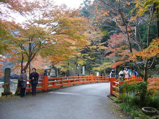 橘色的高雄橋