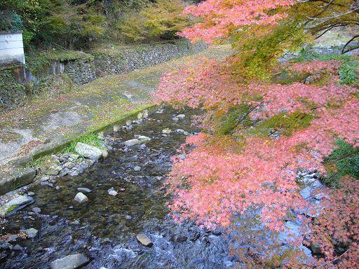 從高雄橋下望的清瀧川