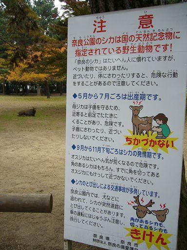 立在路旁的鹿看板,要你小心看「鹿」^(++)^