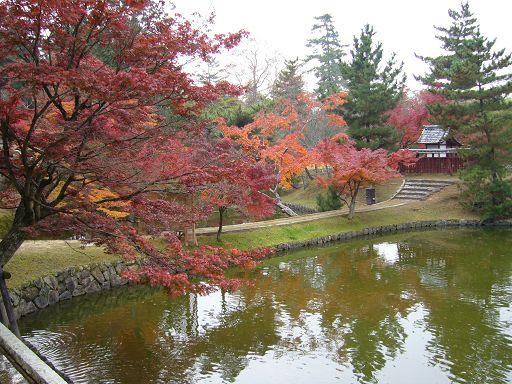 鏡池中有一個小小的神社,但是沒辦法越水過去瞧