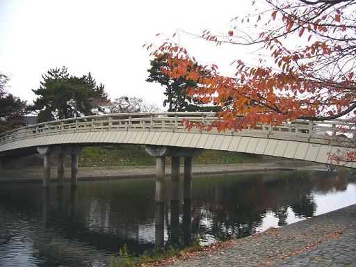 木造的橋看起來特別優雅