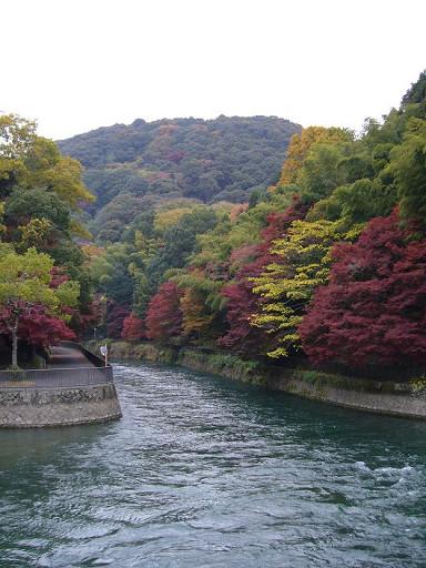 秋天的山景看起來格外繽紛多彩