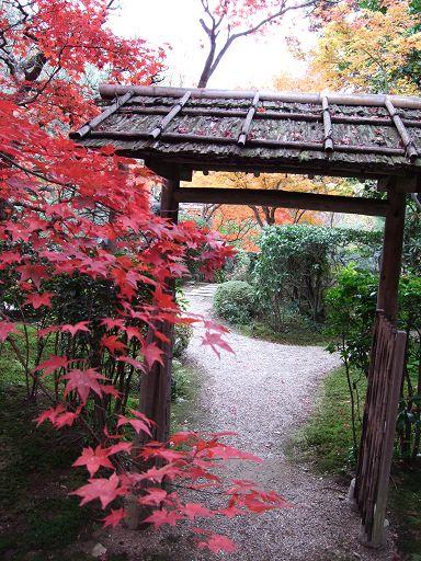 進去後,是一方美麗又雅致的紅色天地