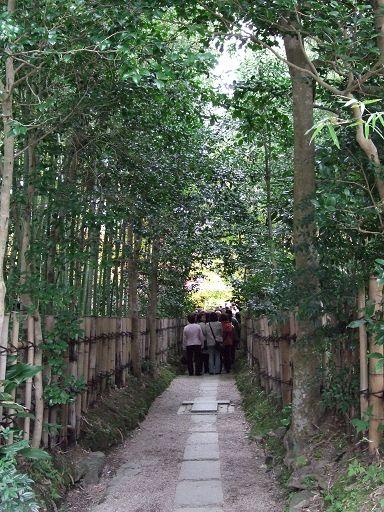 充滿綠意的小徑,直走進去,就可以看到厭離庵的木門了