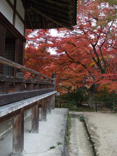 秋天真是最適合參訪寺院的季節啊*O*