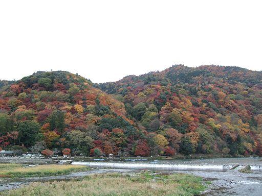 嵐山斑斕的山景非常迷人