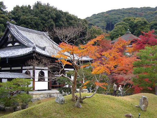 開山堂附近的池泉式庭園設計,是出自宗師級的造園名人小掘遠州之手