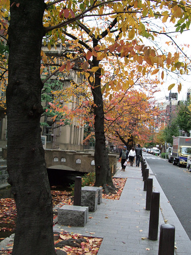 落葉飄飄木屋町