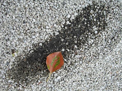 繼續往神社裡走,參道上鋪著許多小碎石,走起路來會不時發出「沙沙」的聲響。