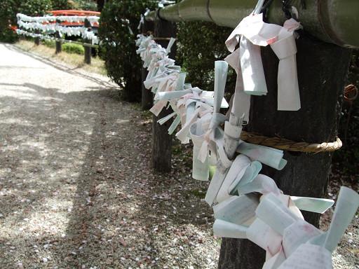 遊客們留下的籤紙。