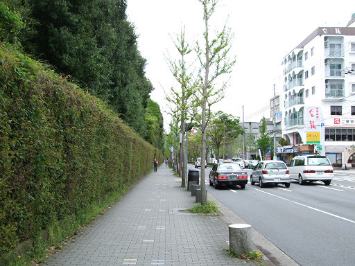 北山通街景。