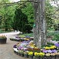 走在寬敞的植物園裡,心情也特別的愉快舒暢。