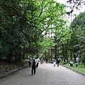 隨興的再往裡走......滿滿的綠意在我們眼底。