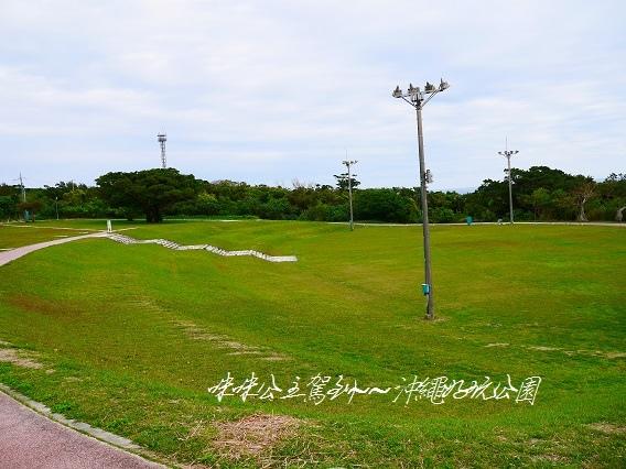 P1420477-1.jpg