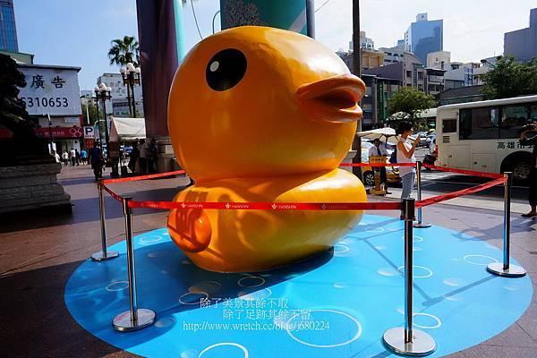 黃色小鴨 (6)