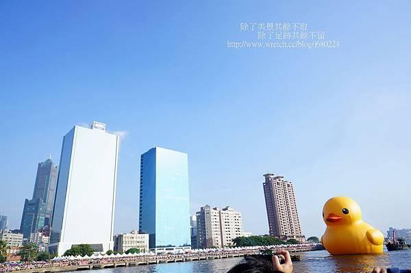 黃色小鴨 (11)
