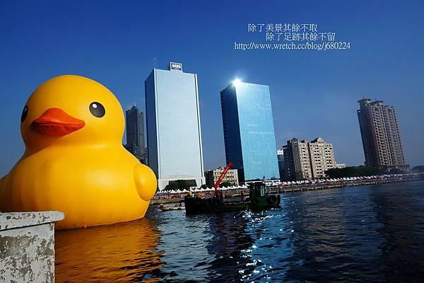 黃色小鴨 (21)