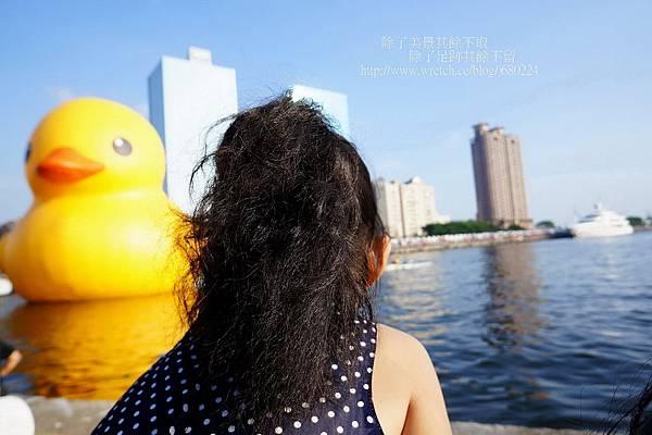 黃色小鴨 (27)